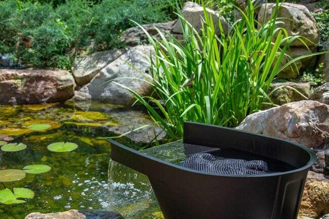 最好的池塘过滤器选项
