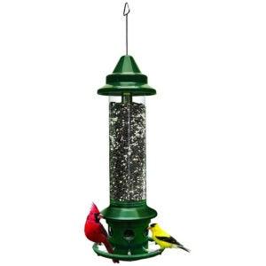 Best Bird Feeder For Cardinals Options: Squirrel Buster Plus Squirrel-proof Bird Feeder