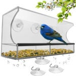Best Bird Feeder For Cardinals Options: Window Bird Feeder with Strong Suction Cups