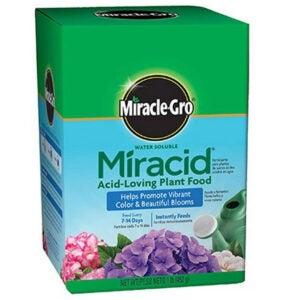 Best Fertilizer for Hydrangeas Options: Scotts Company Miracle-Gro