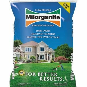 The Best Fertilizer For St Augustine Grass Option: Milorganite 0636 Organic Nitrogen Fertilizer