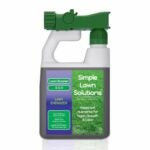 The Best Fertilizer For St Augustine Grass Option: Scotts Southern Turf Builder Lawn Food
