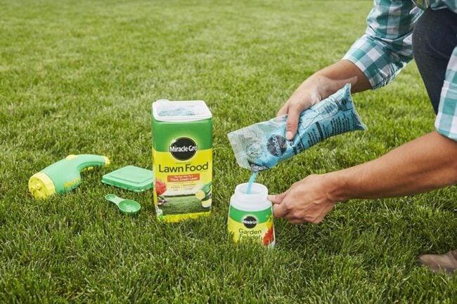The Best Fertilizer For St Augustine Grass Option