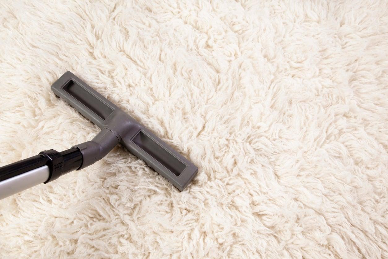 The Best Vacuum For Shag Carpet Option