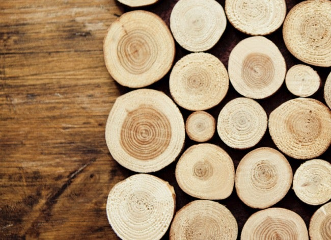 types of wood - maple