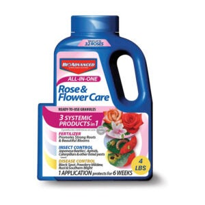 Best Fertilizer For Hibiscus Option: BAYER CROP SCIENCE All in One Flower Care Granules