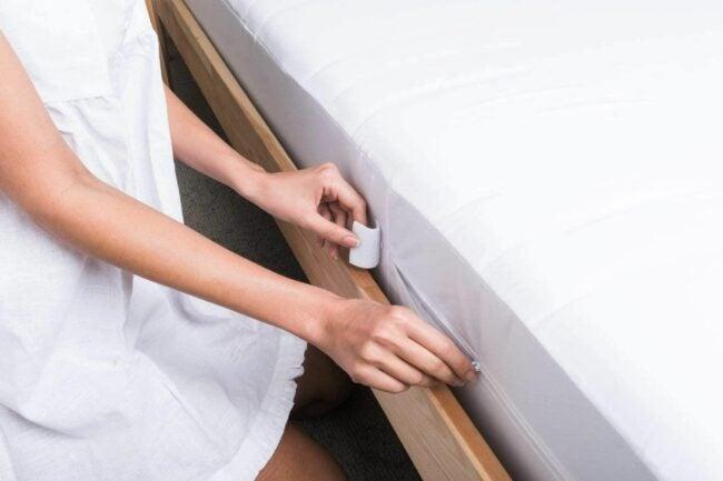 最好的臭虫床垫覆盖选项