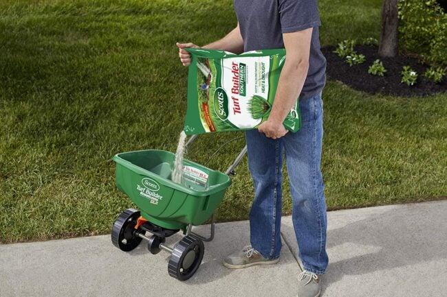 蜈蚣草的最佳肥料