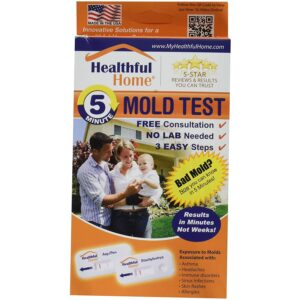The Best Mold Test Kit Option: Healthful Home 5-Minute Mold Test