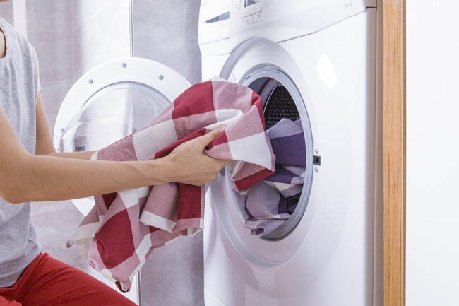 Does Bleach Kill Bed Bugs Deep Clean the Home