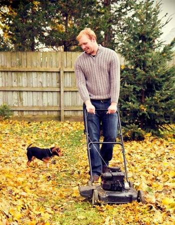 Mulching Leaves Benefits