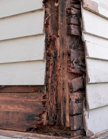 Termite Treatment Cost Factors in Calculating the Cost