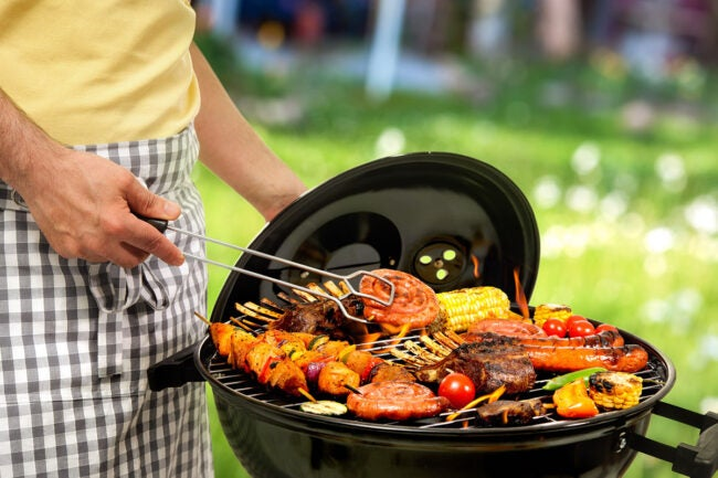The Best Grill Brands Options