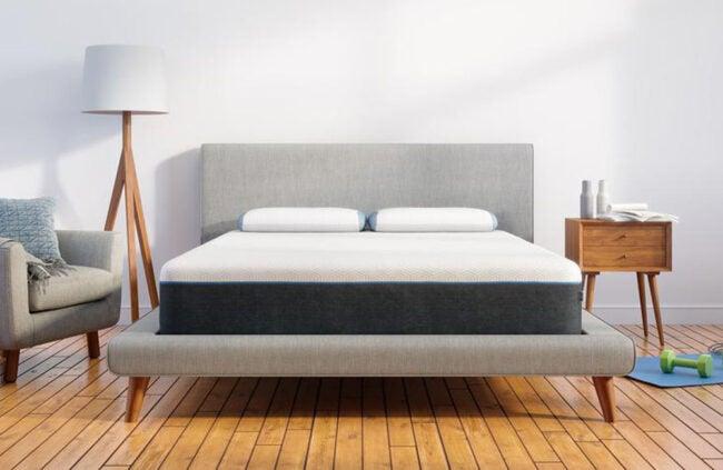 购买床垫的最佳地点熊
