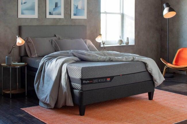 买床垫的最佳地点蕾拉