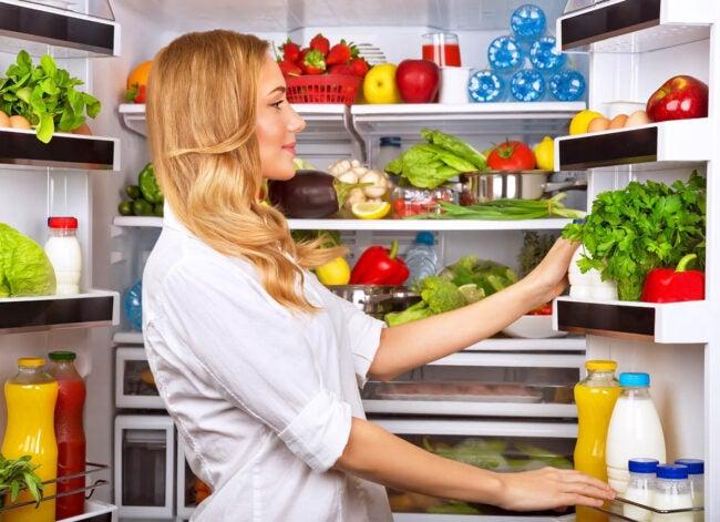 The Best Refrigerator Brands Options