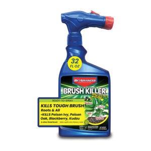 最好的树桩杀手选择:Bioadvanced 704645A刷杀手和树桩卸妆