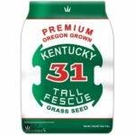 The Best Grass For Sandy Soil Option: DLF Premium Oregon Grown Kentucky 31 Tall Fescue