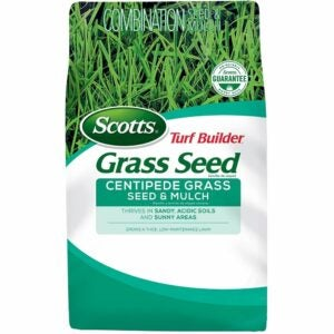 The Best Grass For Sandy Soil Option: Scotts Turf Builder Centipede Grass Seed and Mulch