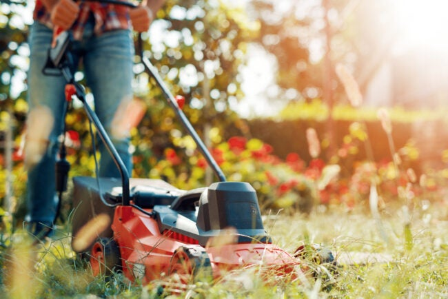 5 Good Reasons Not to Mow the Lawn This Weekend