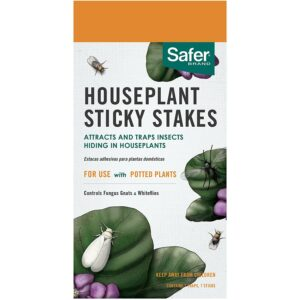 Best Gnat Trap Option: Safer Brand Houseplant Sticky Stakes Insect Traps