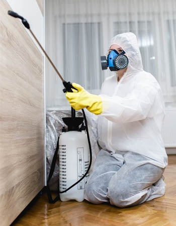 Exterminator Cost Factors in Calculating the Cost