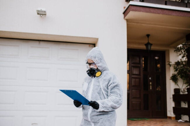 Exterminator Cost How to Save Money