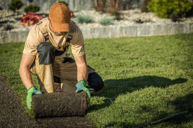 How Much Does Landscaping Cost Additional Costs