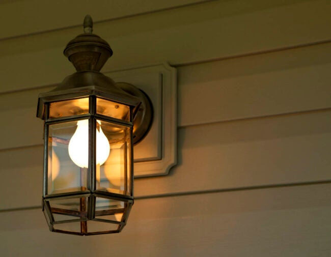 How To Get Rid of Kissing Bugs Replace Outdoor Bulbs