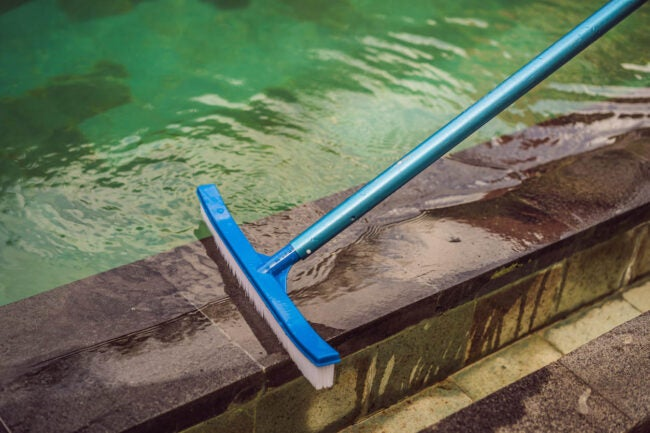 How to Maintain a Pool Brush the Sides