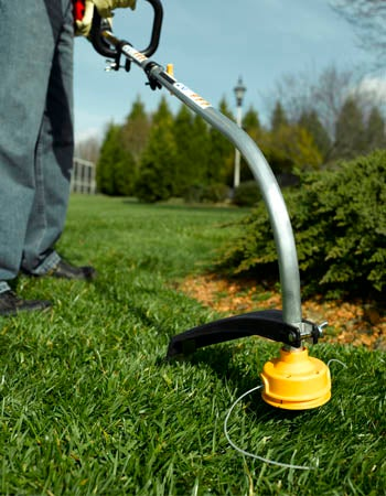 Lawn Care Cost Factors in Calculating the Cost