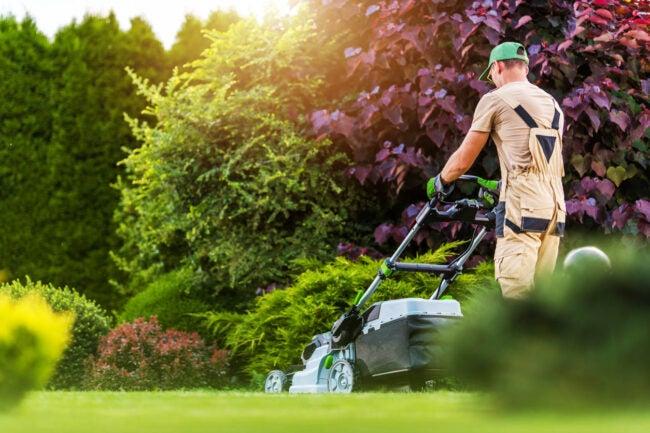 Lawn Mowing Service Near Me