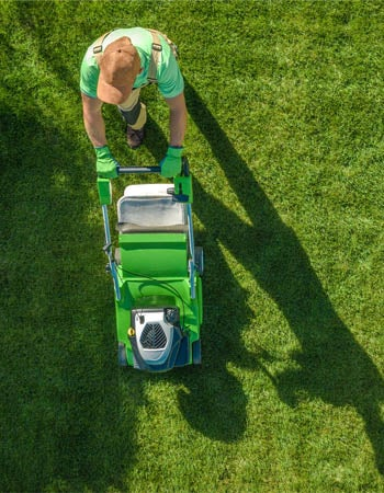 Lawn Mowing Service Near Me Cost
