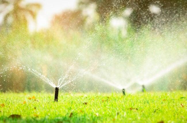 Sprinkler System Cost Do I Need a Lawn Sprinkler System