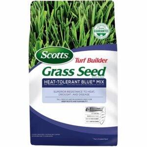 The Best Kentucky Bluegrass Seed Option: Scotts Turf Builder Grass Seed Heat-Tolerant Blue Mix
