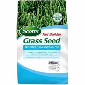 The Best Kentucky Bluegrass Seed Option: Scotts Turf Builder Grass Seed Kentucky Bluegrass Mix