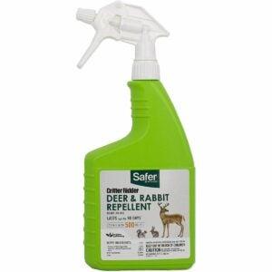The Best Rabbit Repellent Option: Safer Brand Critter Ridder Rabbit Repellent