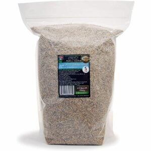The Best Tall Fescue Grass Seed Option: Kentucky 31 K31 Tall Fescue Grass Seed by Eretz