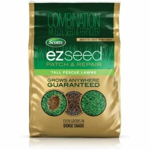 The Best Tall Fescue Grass Seed Option: Scotts EZ Seed Patch and Repair Tall Fescue Lawns
