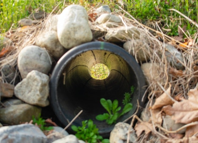 french drain cleaning