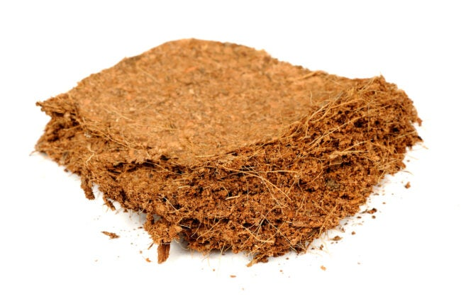 diy potting soil -- A piece of coconut coir brick (used as a growing medium or soil amendment) isolated on a white background
