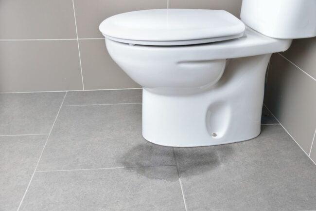 Caulk Around Toilet