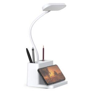 Cordless Lamp Option: AXX LED Desk Lamp with Pen Holder