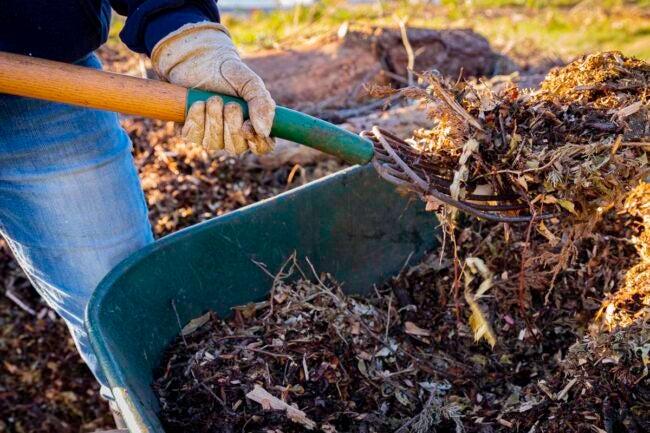 How Much Is a Yard of Mulch DIY vs. Hiring a Professional