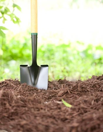 How Much Is a Yard of Mulch How to Calculate