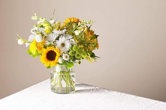 The Best Places to Buy Flowers Option ProFlowers