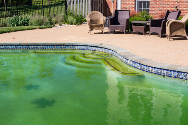 Why Is My Pool Green