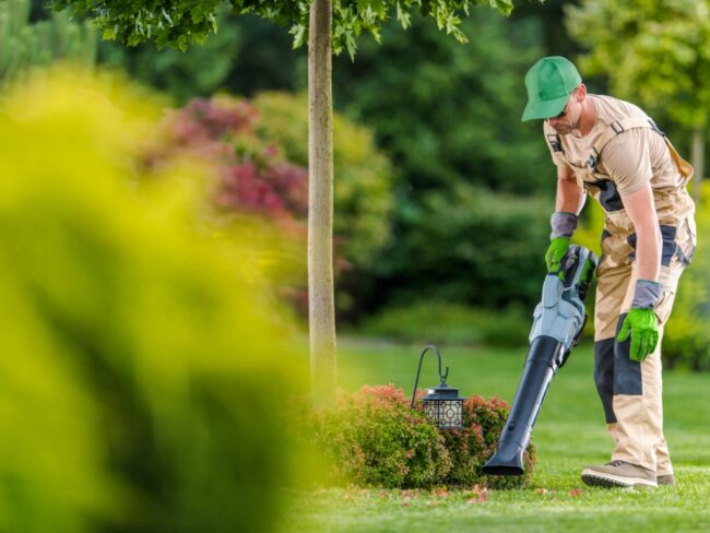 gardener-with-cordless-leaf-blower-cleaning-backyard-garden-picture-id1263707169