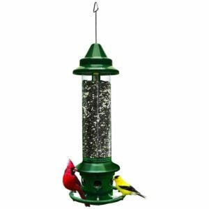 The Gifts for Bird Lovers Option: Brome Squirrel-proof Bird Feeder