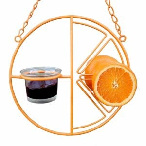 The Gifts for Bird Lovers Option: Heath Outdoor Products Clementine Oriole Feeder